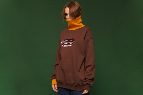 [Sold out] Turtle sweatshirt (brown)